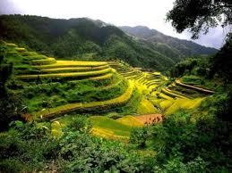 kitajska pokrajina