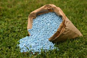 V kolikor nimamo časa za gnojenje petkrat letno, bomo gnojilo za travo uporabili vsaj pred poletjem in pred zimo.