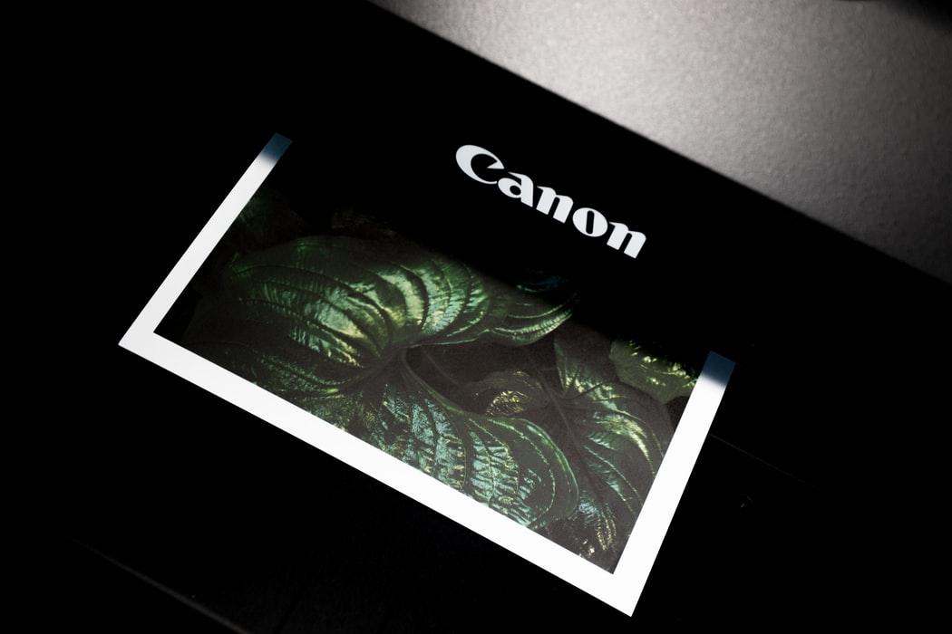 Canon tiskalnik tiska fotografijo rastline.